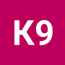 Ксения 90