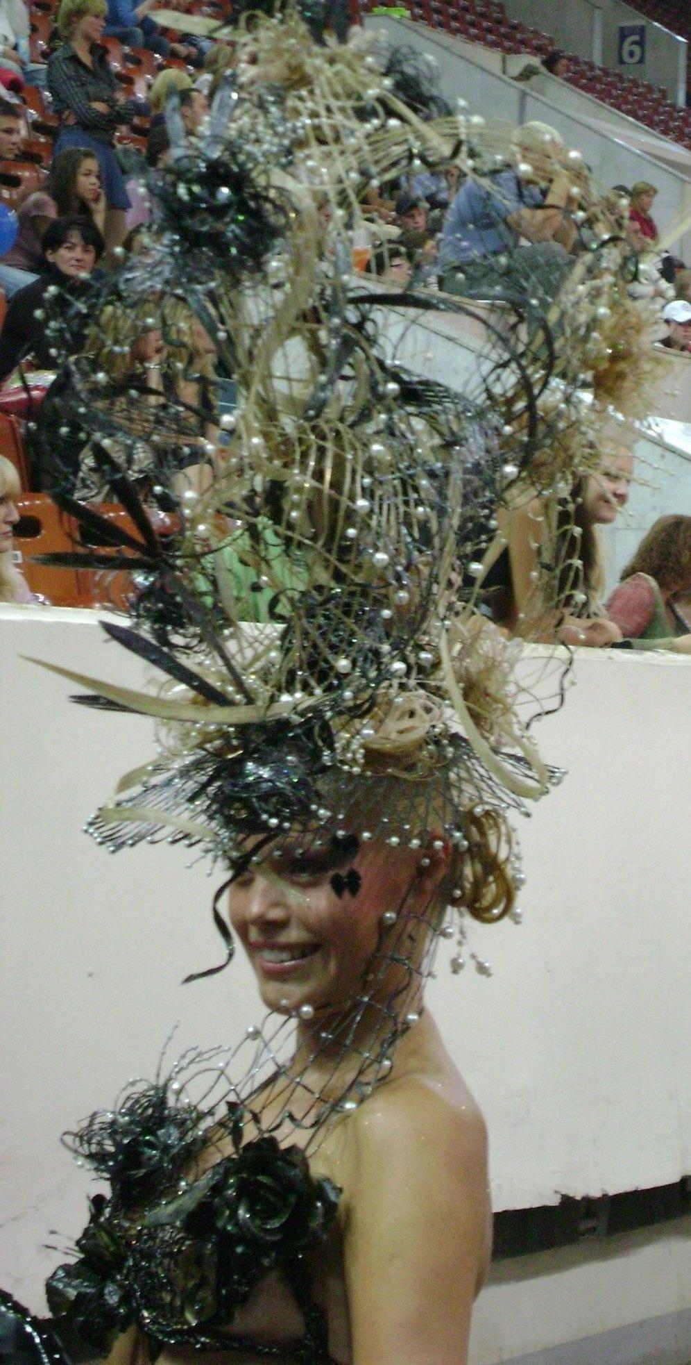 хаир пластика-профессиональная забава и мастерство