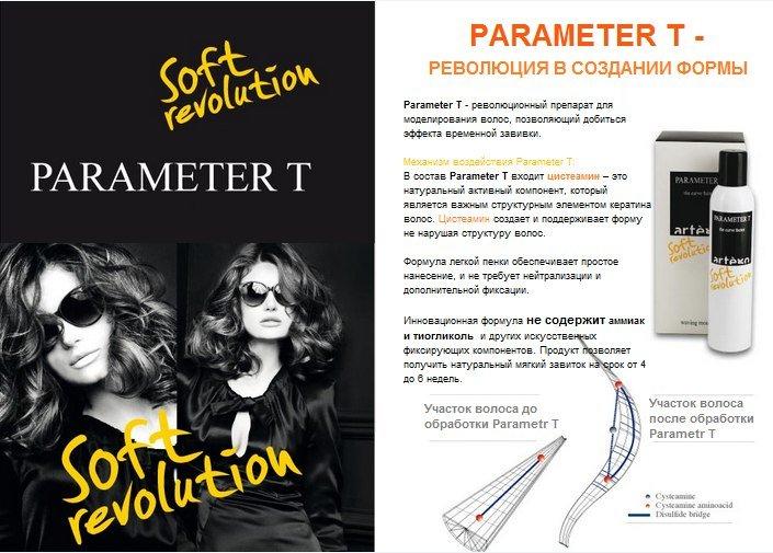 parameter T