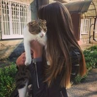 Alina Lolaeva