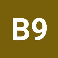 B.o.a.g 94