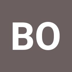 bigudi org ua